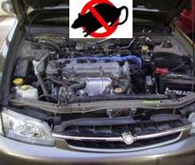 car-rodent-repellent