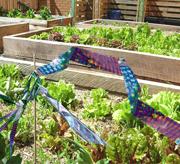 irri-tape-garden