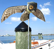 prowler-owl-boat