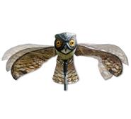prowler-owl-f